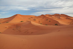 Marokkanische Wüstenlandschaft mit blauem Himmel Stockbilder