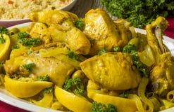 Marokkanisches Huhn Lizenzfreie Stockbilder