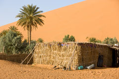 Marokko. Oasis in Merzouga in the Sahara desert Royalty Free Stock Images