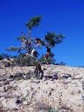 marokko Stockbild