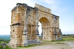 in Marokko Afrika das alte römische Monument und der Standort Lizenzfreie Stockbilder