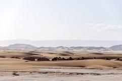 Marokko, Draa-Tal. Oase Doum Laalag Lizenzfreie Stockbilder