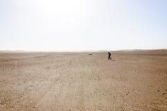 Marokko, Draa-Tal, Trekker Stockbilder