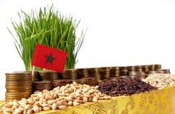 Marokko fahnenschwenkend mit Stapel Geldmünzen und Stapel des Weizens stockfotos