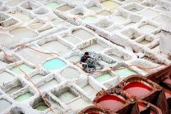 Marokko, Fez, de oude stad - 15 September, 2014: Arbeidersverf de huid in stoffenververs Royalty-vrije Stock Foto