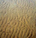 Marokko im nassen Sandstrand der Afrika-Braunküstenlinie nahe atlantischem O Stockbilder