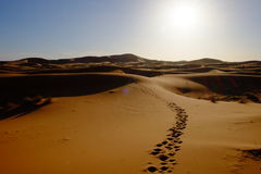 Maroko deser Obrazy Royalty Free