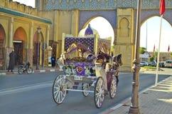 Maroko, Meknes obrazy royalty free