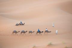 Maroko pustyni wielbłądy Zdjęcie Royalty Free