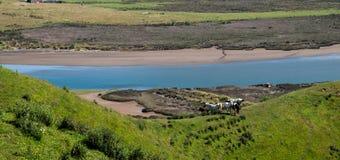Marokopa river Royalty Free Stock Images
