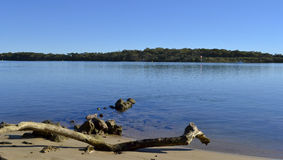 Maroochy-Fluss, Sonnenschein-Küste, Queensland, Australien Lizenzfreies Stockbild