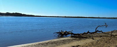 Maroochy River, Maroochydore, Sunshine Coast, Queensland, Australia. Morning on the Maroochy River, Maroochydore, Sunshine Coast, Queensland, Australia Royalty Free Stock Photography