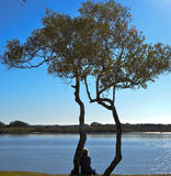 Maroochy River, Maroochydore, Sunshine Coast, Queensland, Australia Stock Photos