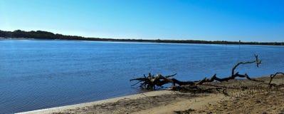 Maroochy rzeka, Maroochydore, światła słonecznego wybrzeże, Queensland, Australia Fotografia Royalty Free