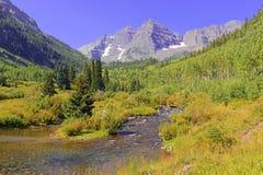 Maroon колоколы, ряд лося, скалистые горы, Колорадо Стоковая Фотография