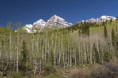 Maroon Bell Mountains Royalty Free Stock Photography