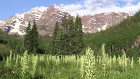 Maroon Bells Summer Landscape Zoom In. The scenic maroon bells aspen colorado in summer stock video