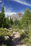 Maroon Bells Wilderness in Colorado Royalty Free Stock Photography