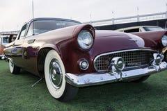 Maroon Classic Stock Photo