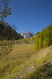 Maroon at a distance. Distant view of Maroon Bells with Aspen meadow in the foreground Stock Photo