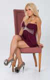 Maroon dress with trim themed shoot. Stock Photos