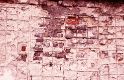 Maroon grunge wall Stock Images