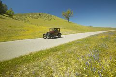 A maroon Model T driving down a scenic road surrounded by spring flowers off of Route 58, Shell Road, CA Stock Photo