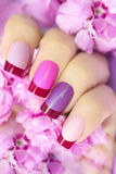 Maroon pink multicolored French manicure. Stock Image