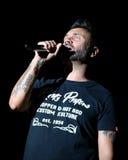 Marostica, VI Włochy, Lipiec, - 7, 2017: Żyje koncert NEK Ital Zdjęcie Royalty Free