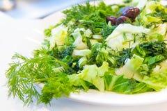Maroulosalata经典希腊莴苣沙拉 库存照片