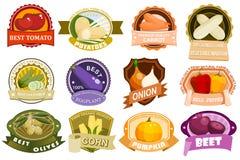 Marquage à chaud de produit d'icônes de calibre de conception de vecteur d'insigne de produit de nature d'eco de logo de label de Photos libres de droits