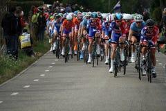 Marque o ciclismo cavendish Imagens de Stock Royalty Free