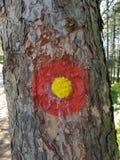 Marque sur un arbre image stock