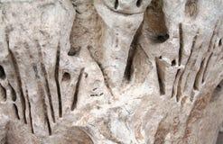 Marques à pierre-Colosseum-JE-Rome photos stock