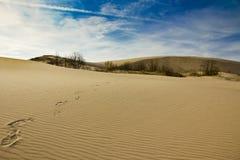 Marques de pied sur des dunes de sable de Silver Lake Image stock