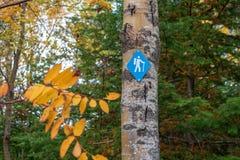 Marqueur bleu de sentier de randonnée sur l'arbre en automne image libre de droits