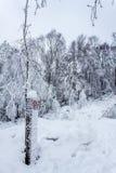 Marqueur de chemin dans la neige Photographie stock libre de droits