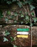 Marqueur de sentier de randonnée peint sur le mur de roche avec le lierre Photos libres de droits