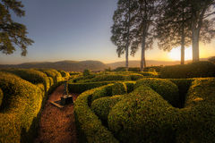 Marqueyssac Gardens in the Fading Sunlight Royalty Free Stock Photography