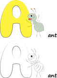 Marquez avec des lettres A, Ant Illustration Image stock