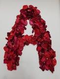 marquez avec des lettres A formé avec les pétales de rose rouges Image stock