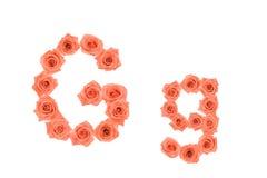 Marquez avec des lettres G, alphabet fait à partir des roses oranges Photographie stock