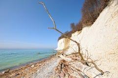 Marquez la falaise à la craie de roche de l'île Allemagne de Rugen dans le printemps photo libre de droits