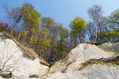Marquez la falaise à la craie de roche de l'île Allemagne de Rugen dans le printemps photos stock