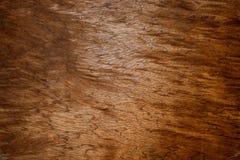 marrón Foto de archivo