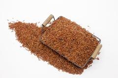 Marrón del arroz Fotografía de archivo libre de regalías