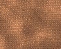 Marrón del fondo de la piel del reptil Imágenes de archivo libres de regalías