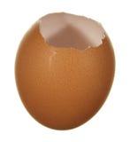 Marrón vacío del huevo Imagenes de archivo