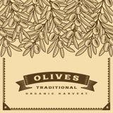 Marrón verde oliva retro de la tarjeta de la cosecha stock de ilustración
