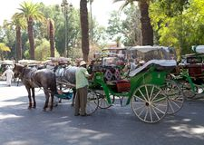 Marrakech Royalty-vrije Stock Foto